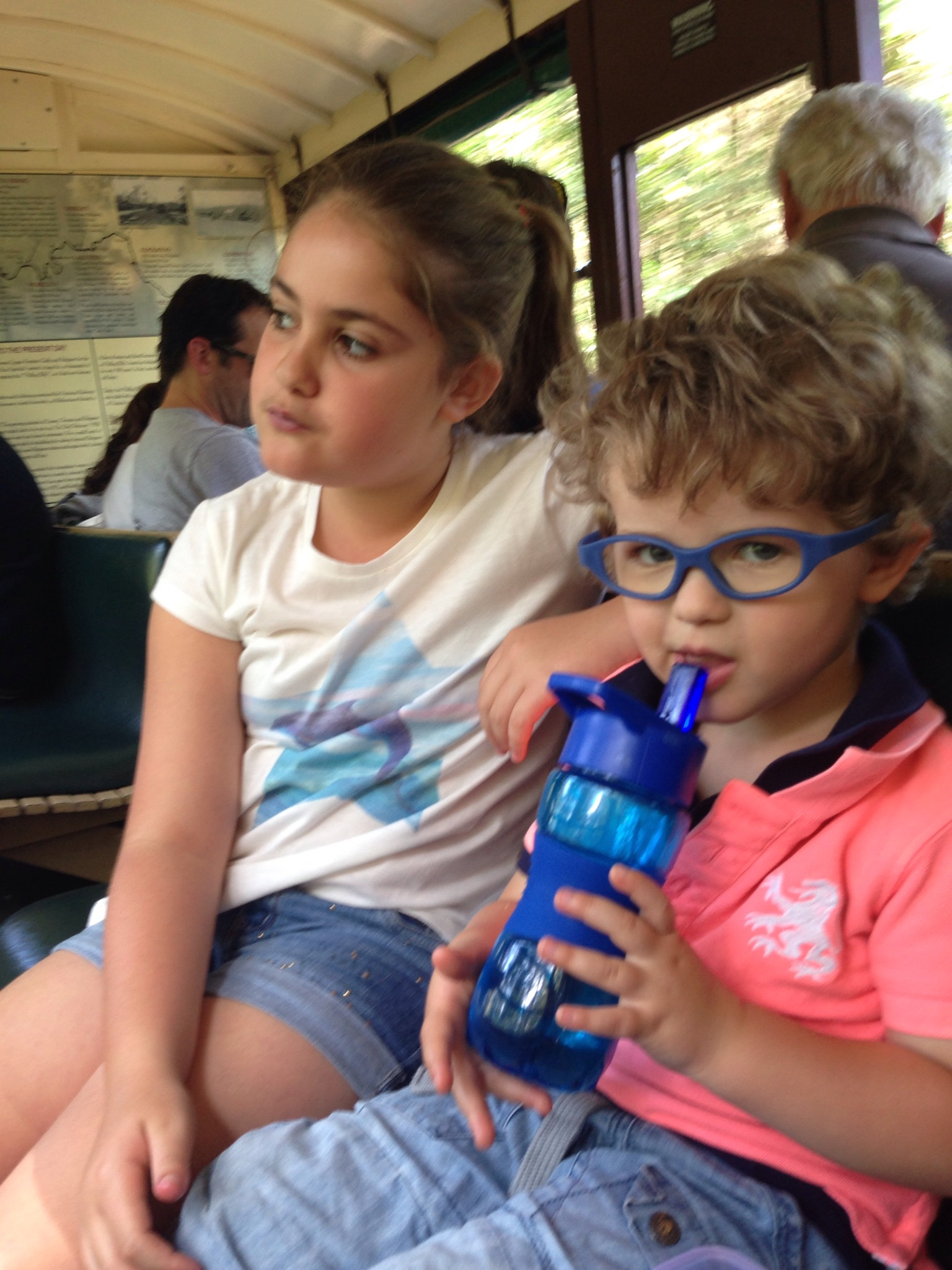 november 2014 Puffing Billy Train